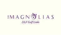 Mangolias